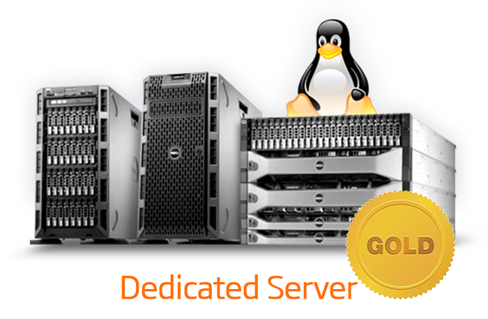 DEDICATED SERVER - GOLD