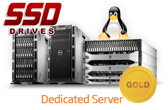 DEDICATED SERVER - GOLD - SSD