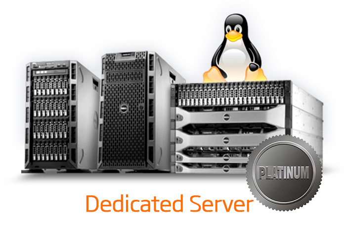 DEDICATED SERVER - PLATINUM