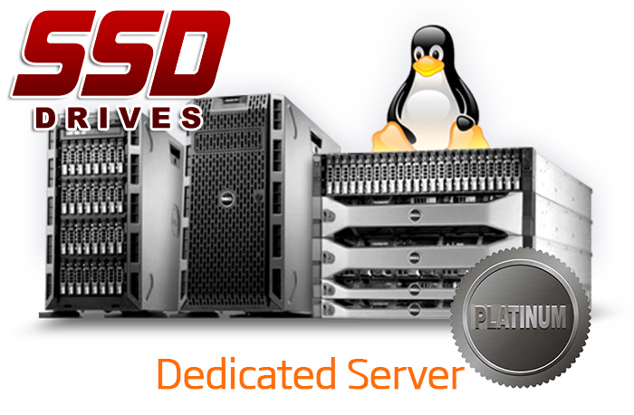 DEDICATED SERVER - PLATINUM - SSD