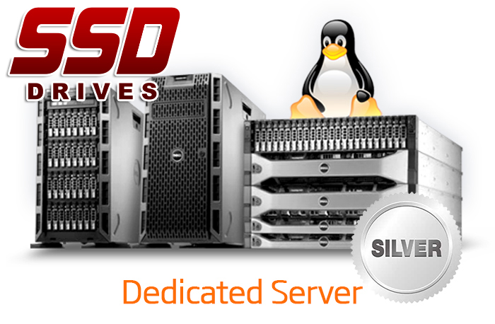 DEDICATED SERVER - SILVER - SSD