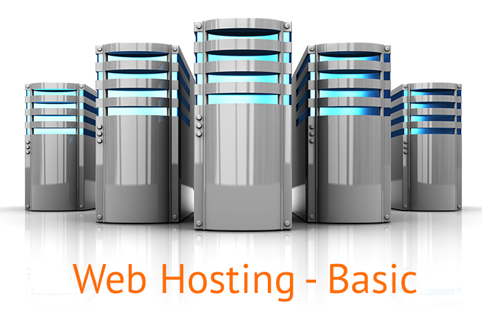 WEB HOSTING - BASIC